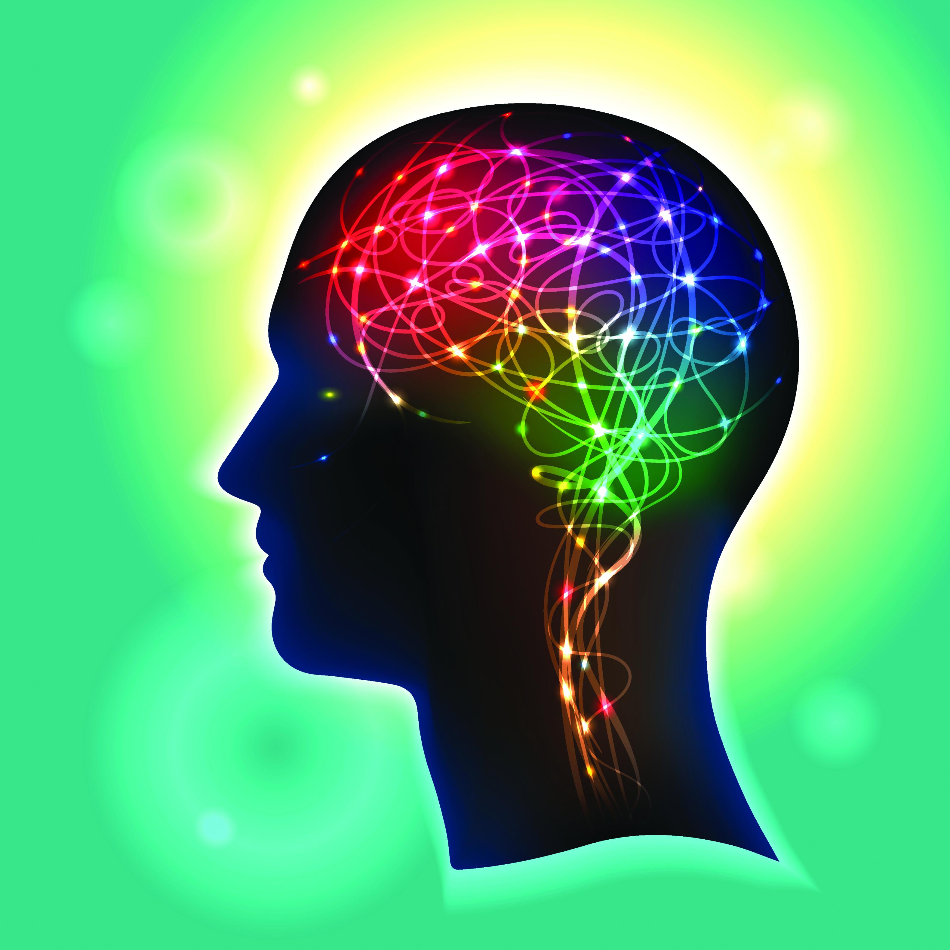 Maintaining Your Brain