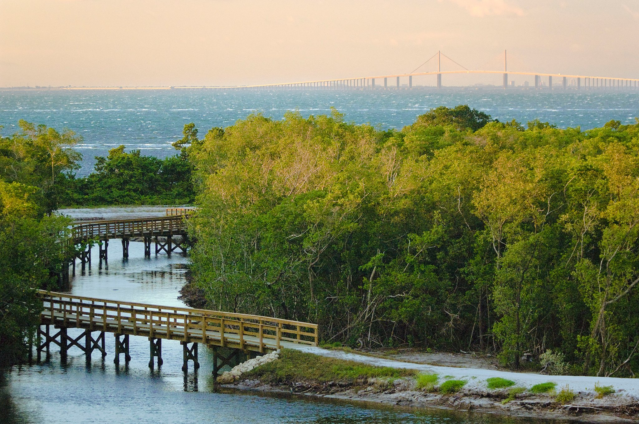 Eco Tours On The Gulf Coast Of Florida