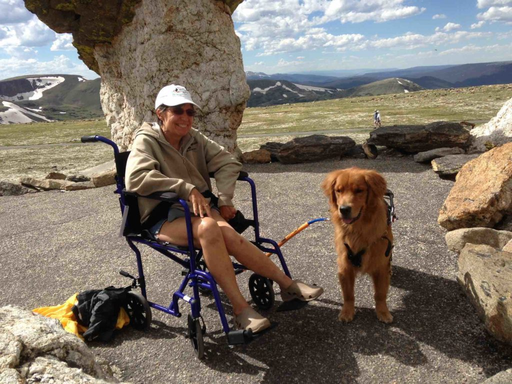 Betsy Leon made it up a steep mountain trail in Colorado with the help of her service dog, Raven, and the bike tow leash for her wheelchair.
