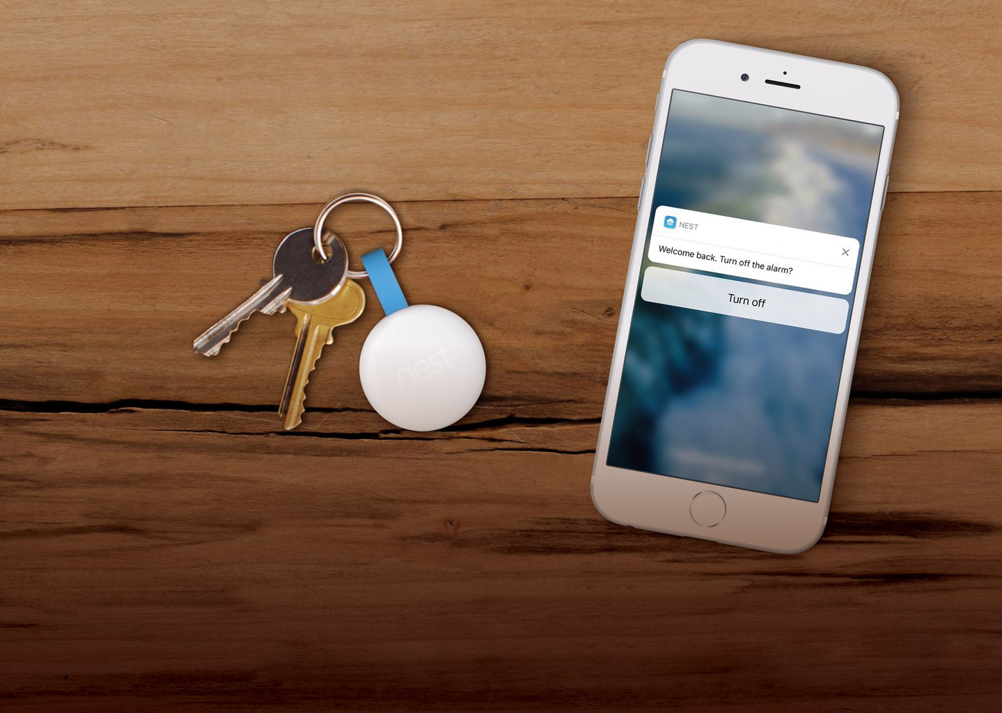 High-Tech Home Protection