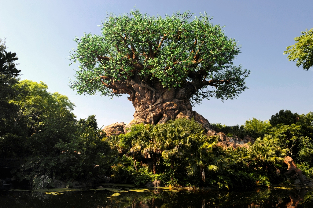 Like Wine, Disney's Animal Kingdom Gets Better With Time