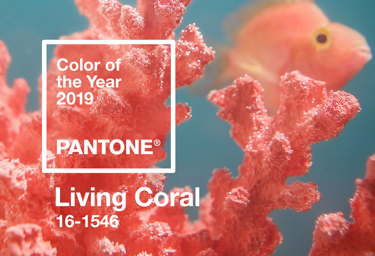 How to Apply Pantone's Color of the Year